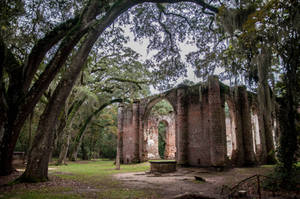 Old Sheldon Church Ruins by Carise