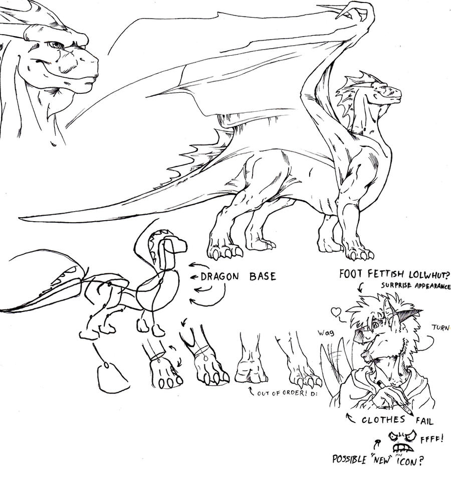 Dragon Anatomy 1 By Gl1tchcr3at0r