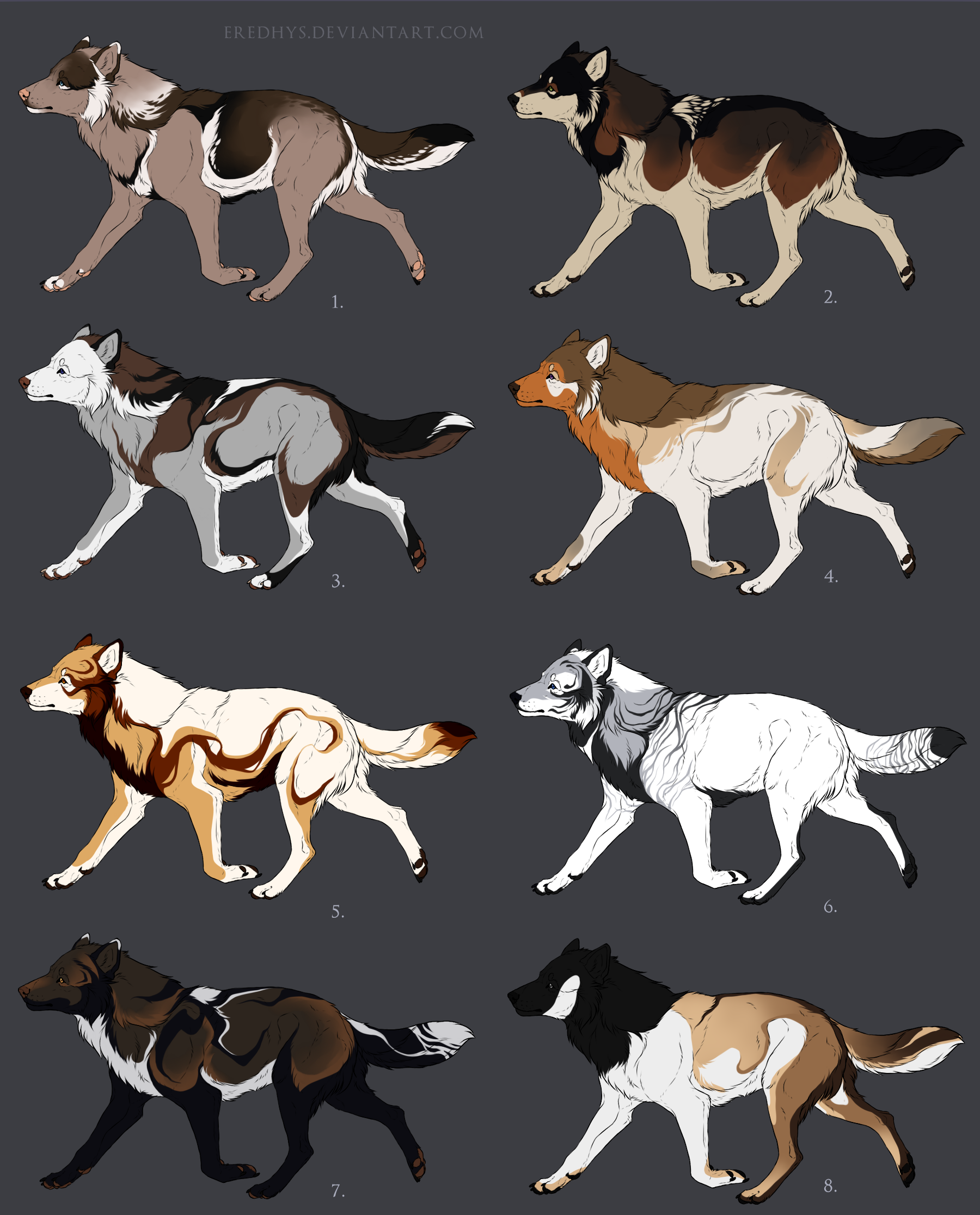 Animal Friends Adoptable Dogs