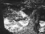 The River Flows Through it