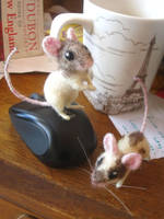 felted mice by HStiLeS