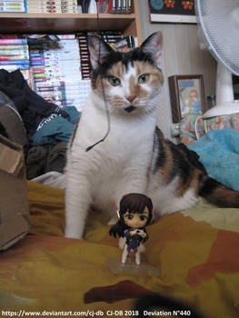 D Va loves the cat