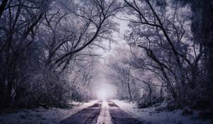 Winter VI