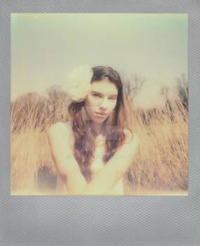 Polaroid - Nora