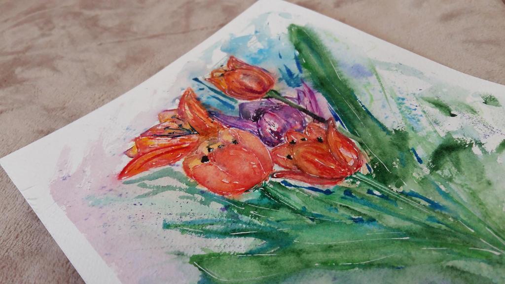 Purple tulip  by Dimitrinaa