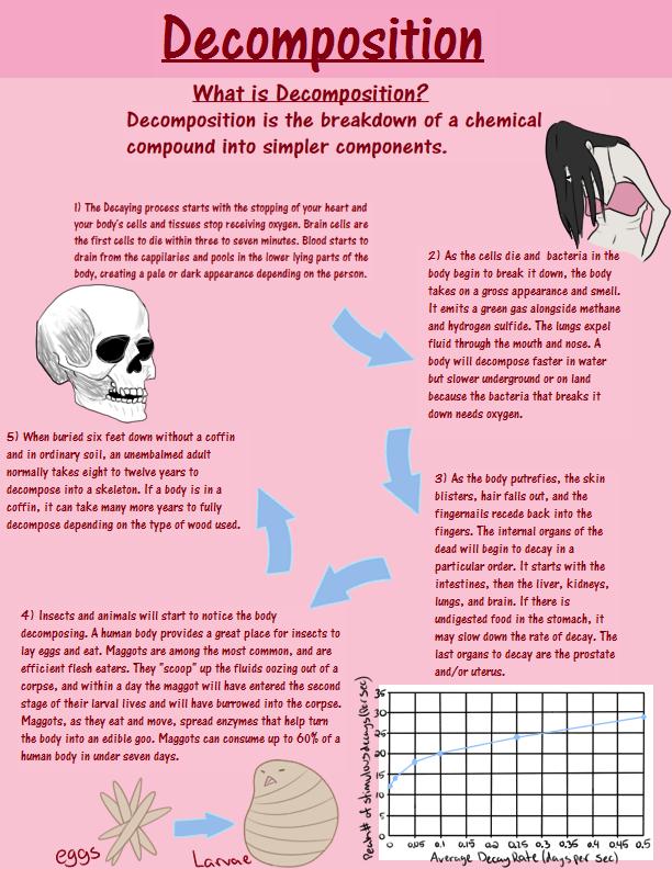 Decomposition by Kliniki