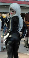 NYCC'12 Black Cat-C II