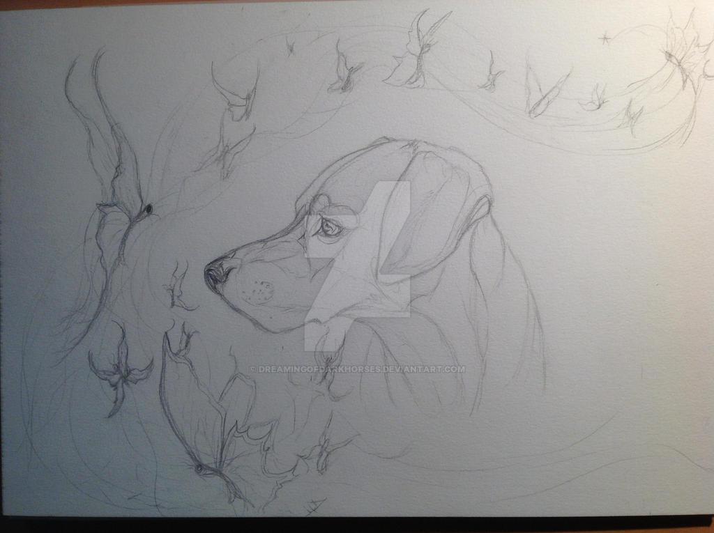 Rudy's portrait WIP pencil by DreamingofDarkhorses