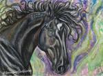 Gift of the Dark Horse