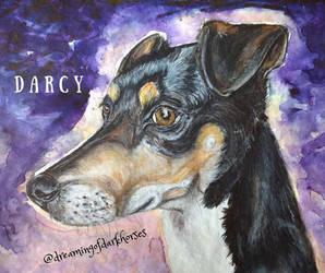 Darcy (com)