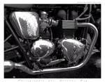 Triumph Bonneville T100 by laurentroy