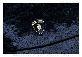 Lamborghini - 05 by laurentroy