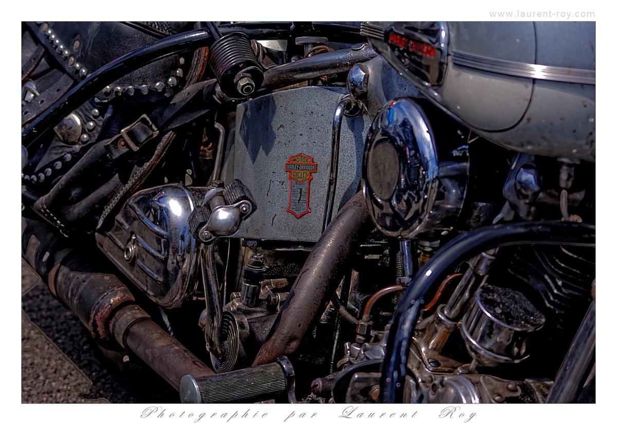 Buy Harley Cafe Racer
