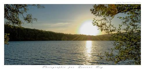 Peaceful evening light