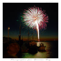 Fireworks - 005 by laurentroy