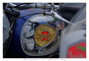 2015 CM - 014 - BSA by laurentroy
