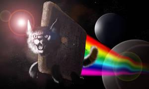 Nyan Cat Timelapse
