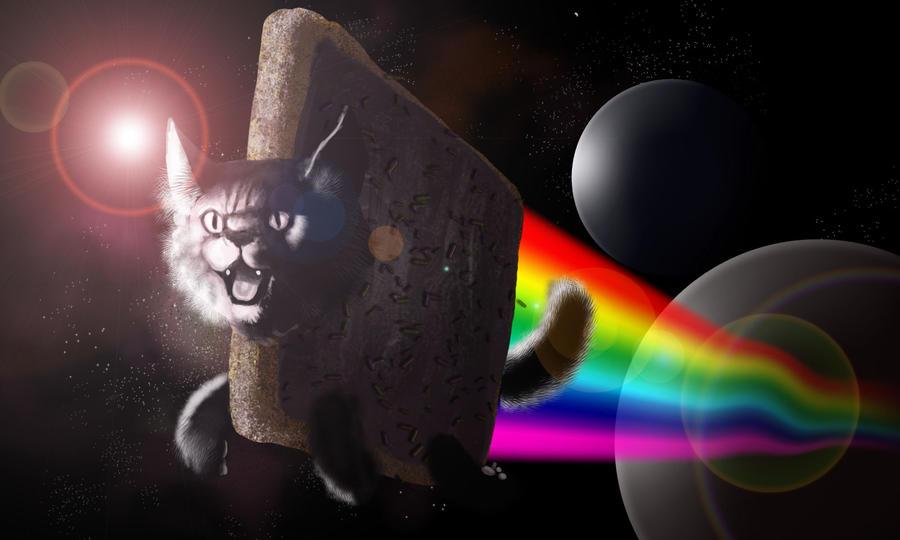 Nyan Cat Timelapse by kingaby