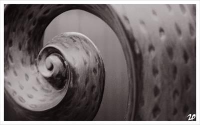 snailish by Chikaw