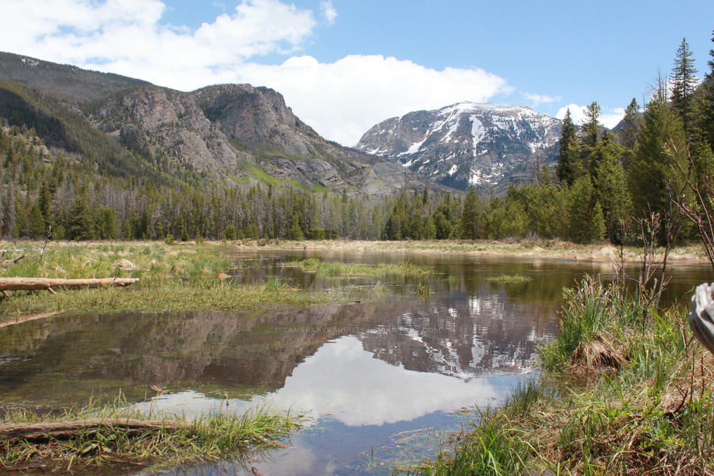 Rocky Mountain National Park 1 by tamebabyparrots