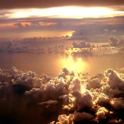 Cielo by tamebabyparrots