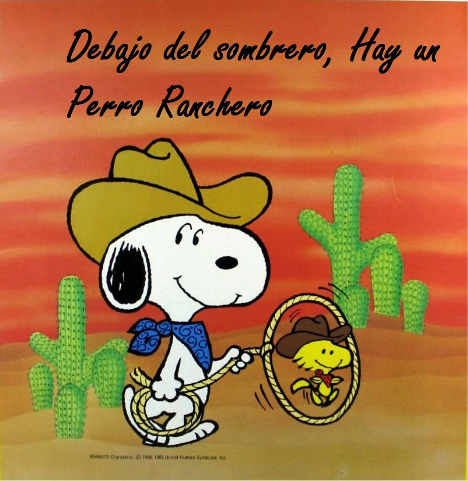 a06ff7037ec3f Debajo del Sombrero by Dzeko17 Debajo del Sombrero by Dzeko17