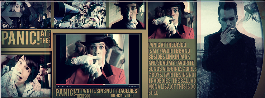 panic at the disco banner