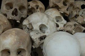 Skulls by tr3ocrue