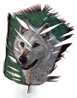 White Wolf - Feather Art by lenzamoon