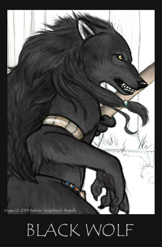 Black wolf furry - photo#24