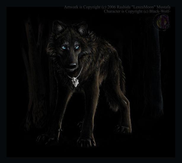 Crown War || Inscripciones Personajes ~ Razas Nacientes. From_shadow___blackwolf_gift_by_lenzamoon