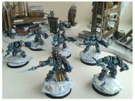 Grey Knight Paladins by WoodlandHermit