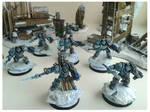 Grey Knight Paladins