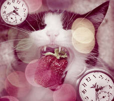 Fotolia contest by TynahC