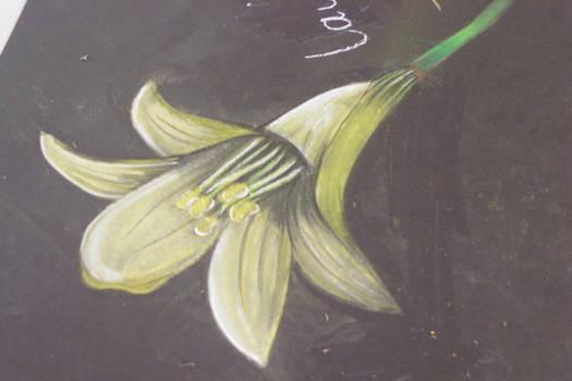 GCSE - Flower