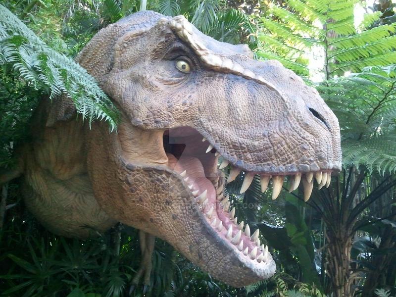 T-Rex up close by drakkor