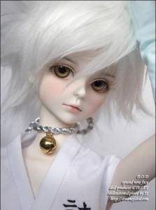 Susucat's Profile Picture