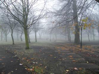 chrchfields park - winter by tzj