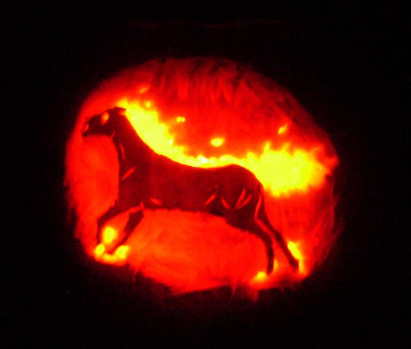 Pumpkin hell horse by feralhound on deviantart