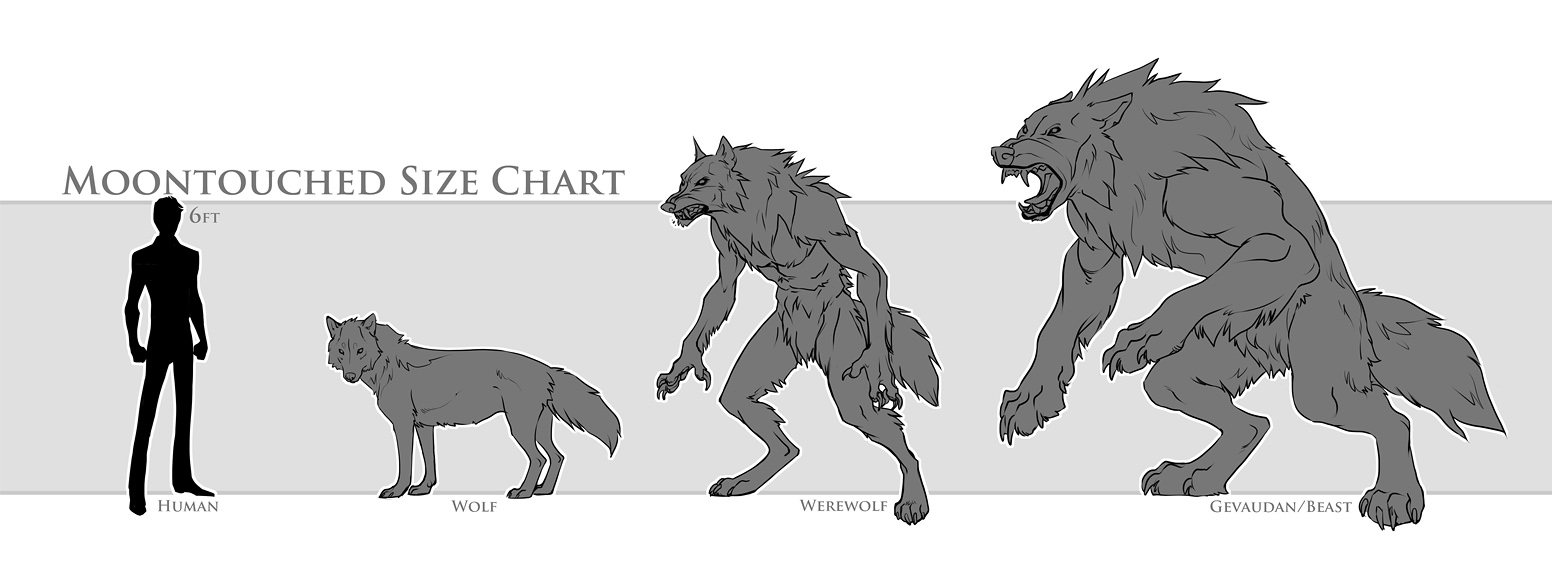 Werewolves: Appearance, Forms, and Information by Moontouched on ...