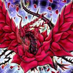 Black Rose Dragon HD