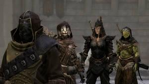 Dark elf, cat, orc-woman, lizard