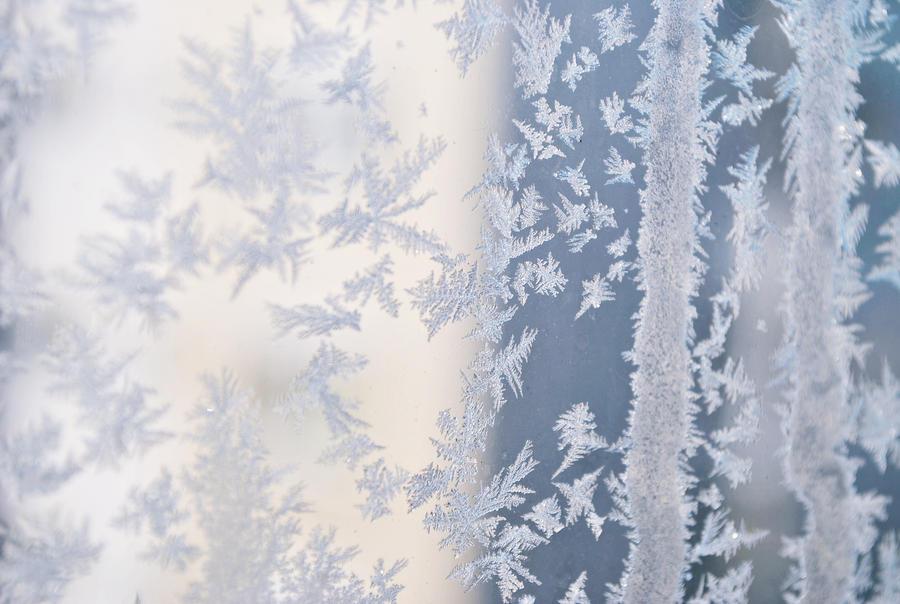freeze. by blushybubu