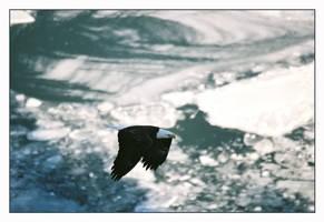 Stillness of Winter by Captain-Planet
