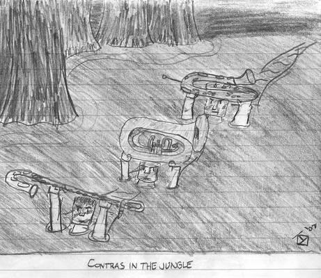 Contras in the Jungle