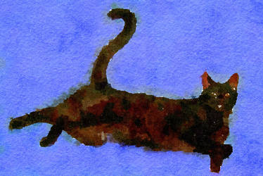 Black Cat with Indigo Background