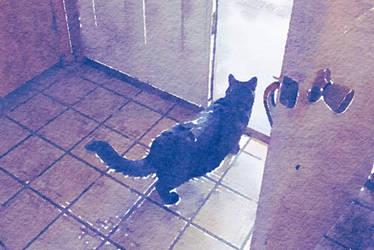 Cat Exiting watercolor