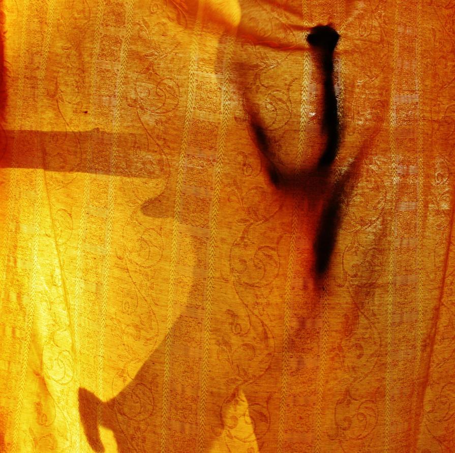 Cat Shadow by NikitaHigh