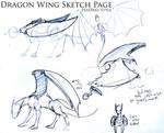 Dt: wings sketchs