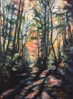 Forest Path in Watercolor by ebjeebies